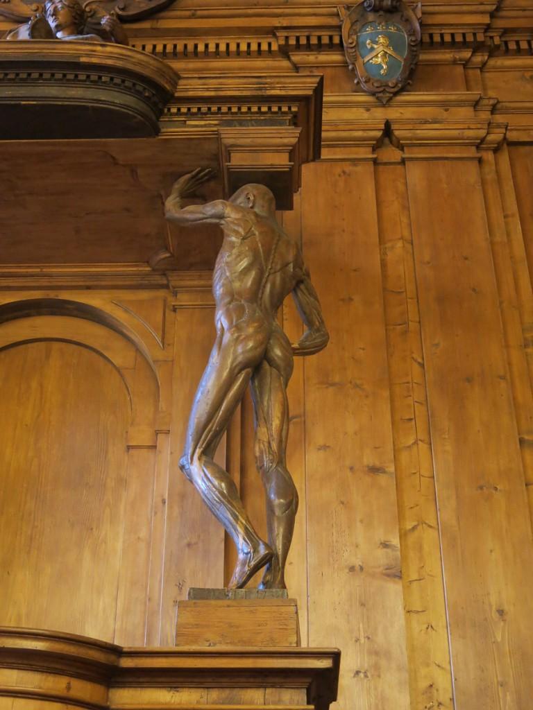 Bologna Palazzo dell´Archiginnasio Teatro Anatomico