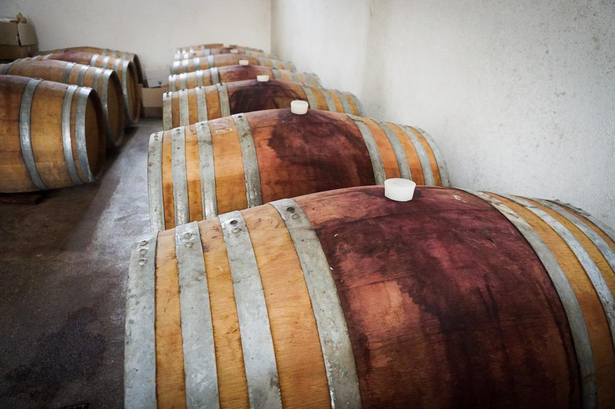 Södra Serbien vingårdar
