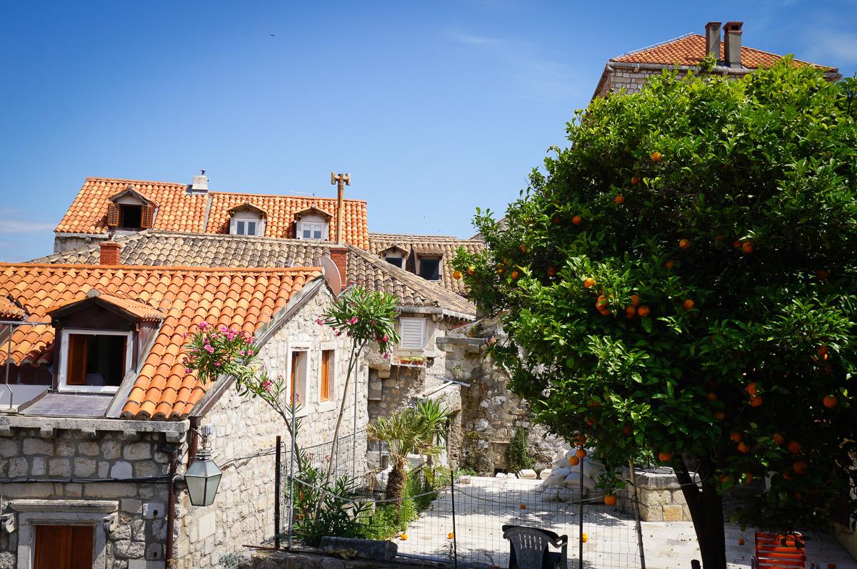 Dubrovnik (12 av 23)