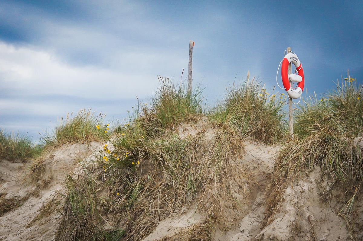 skane-osterlen-sandhammaren