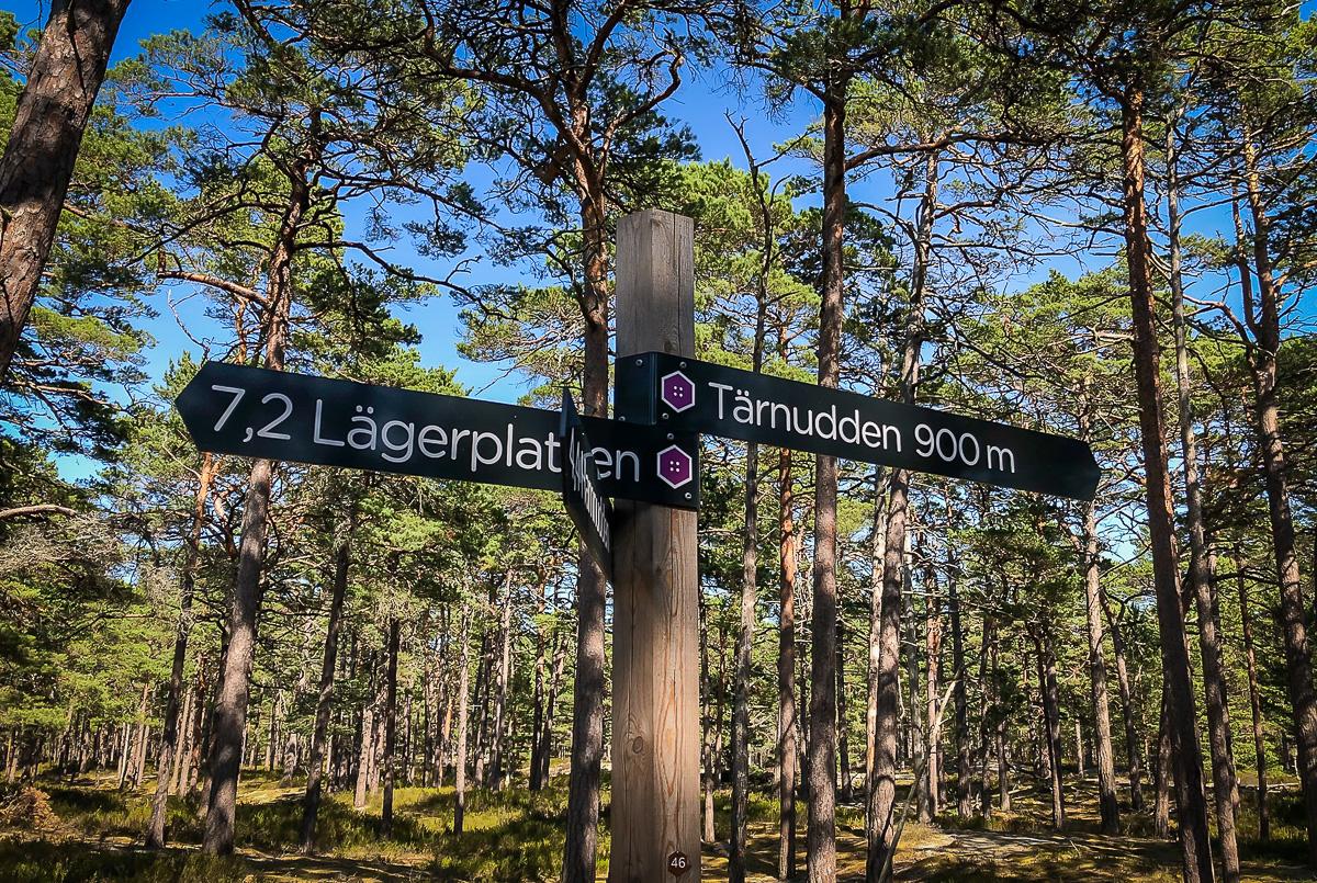 Sverige Gotska Sandön Maxime Löfblad